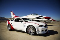 Mustang de raça